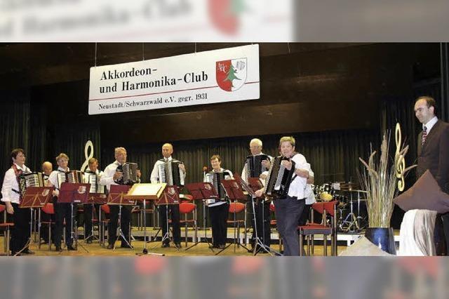 Akkordeonisten bieten große Vielfalt