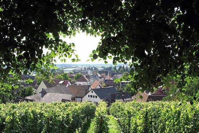 Wo Wein und Tourismus sich nah sind