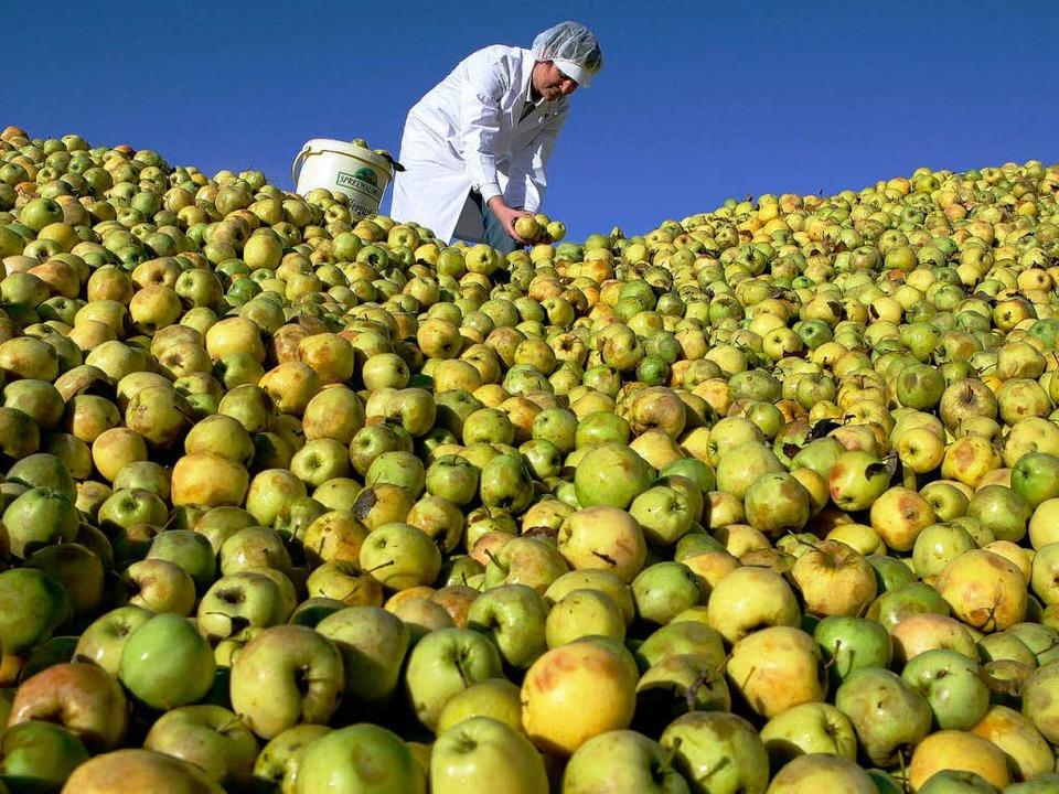 Die Nachfrage nach Ökolebensmitteln ist groß.    Foto: dpa