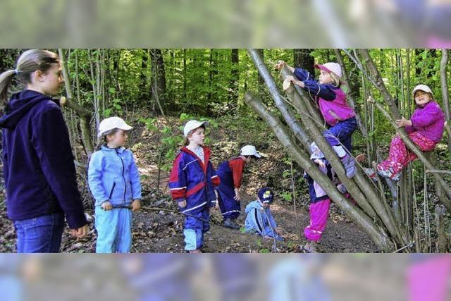 Kinder lernen den Wald kennen