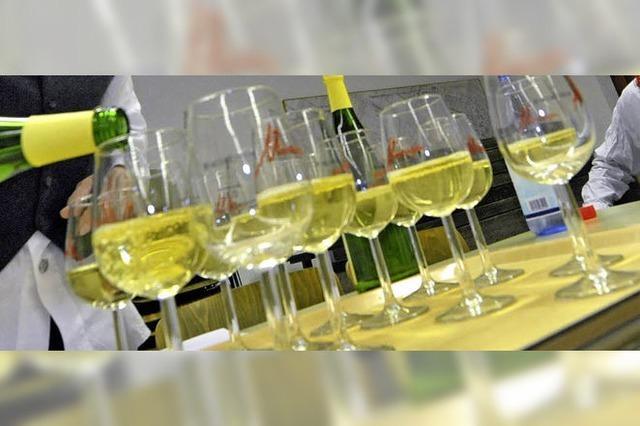 Ein Blick in viele Weinkeller
