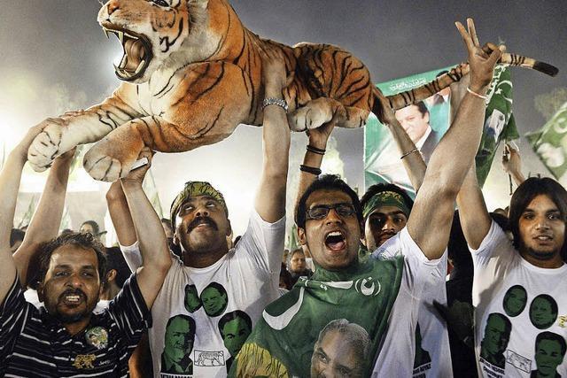 Ein toter Tiger und seine Auswirkung auf die Wahl