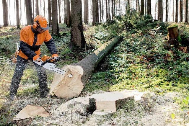 Selbst gesägt – das macht Brennholz billiger