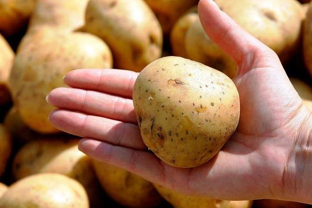 Kartoffelkartell: Preisabsprachen am Telefon?