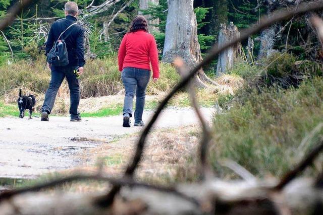 Streit um Nationalpark geht nach Bürgervotum in neue Runde