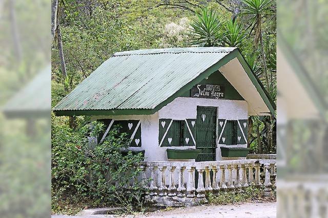 Schwarzwald in Nicaragua