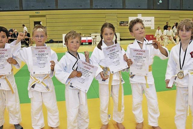 Judoka holen jede Menge Gold, Silber und Bronze