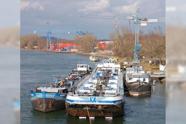 Rheinhafengesellschaft gleicht Rückgänge bei Massengütern aus