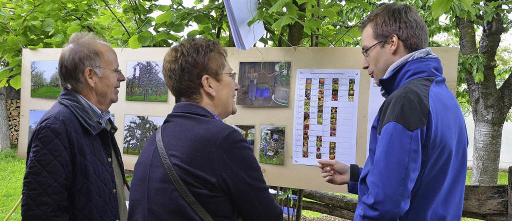 Phillip Tritschler informiert über die...n Streuobstwiesen der Familie reifen.     Foto: S. Müller