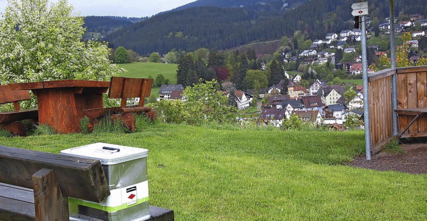 Foto: Neue Bücherbox hoch über Lenzkirch    Foto: Manfred-G. Haderer