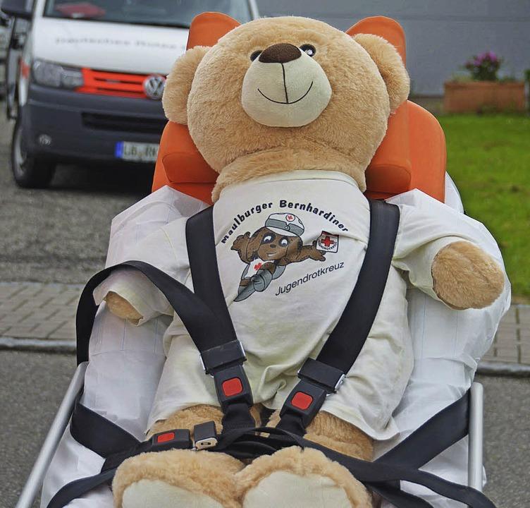 Teddy in Not    Foto: Sebastian Probst