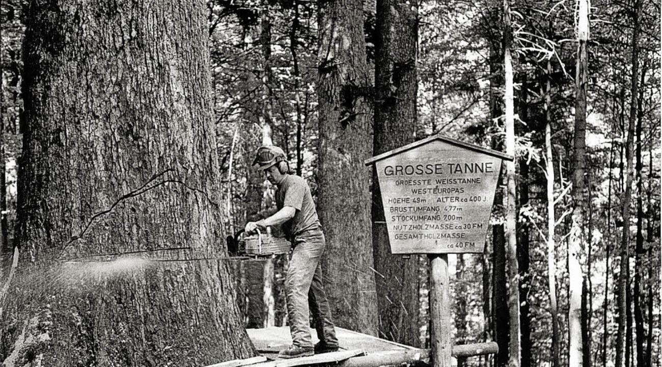 Aus Sicherheitsgründen wurde die große...aumriesen eine Ausstellung zu widmen.     Foto: archivfoto: zvg