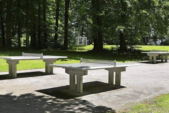 Gelände beim Forsthof als Standort für den Campingplatz im Gespräch