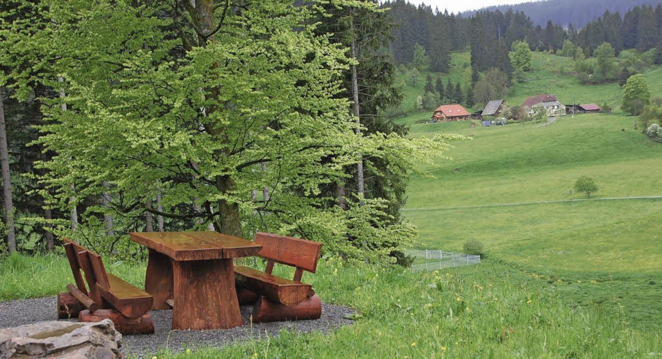 Urseeblick mit RastplatzDen Ursee und ...sogenannten Ursee-Rundweg überblicken.  | Foto: Manfred-G. Haderer