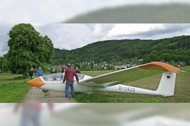 Segelflugzeug muss auf einem Acker notlanden