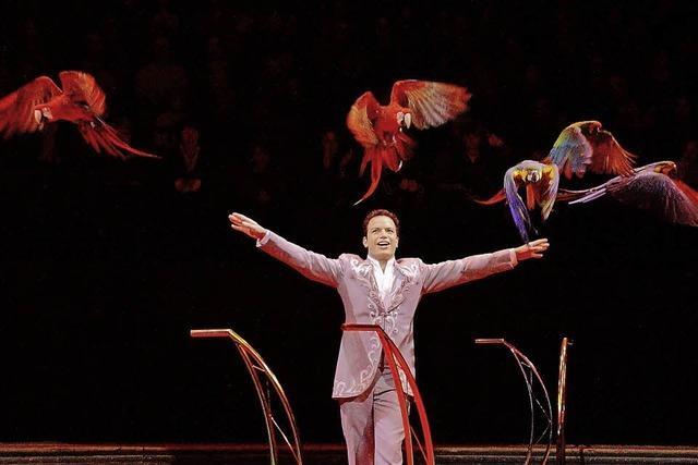 Schweizer National-Circus Knie gastiert in Basel