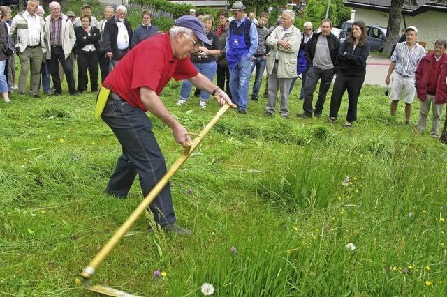 Südtiroler kämpfen um den Sieg als Mähkönig