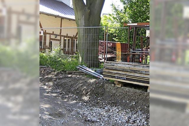 Grüne fordern sofortigen Baustopp