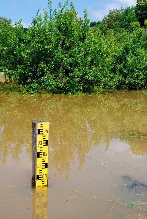 Land unter: Im Bötzinger Rückhaltebecken Laire (R3) wird Wasser gestaut.    Foto: Manfred Frietsch