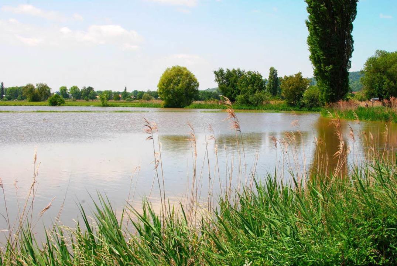 Land unter: Im Bötzinger Rückhaltebeck...t Wochen mit Wasser gesättigt waren.      Foto: manfred frietsch