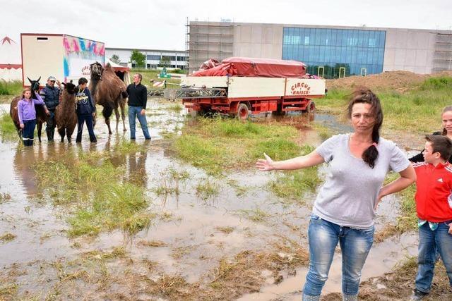 Familienzirkus steht in Malterdingen unter Wasser