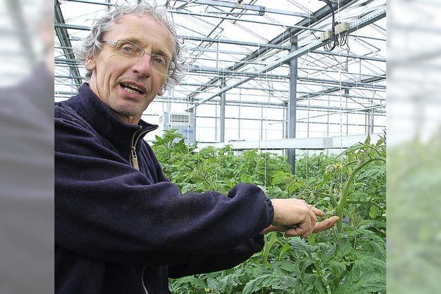 Gemüsebauern und Landwirte klagen