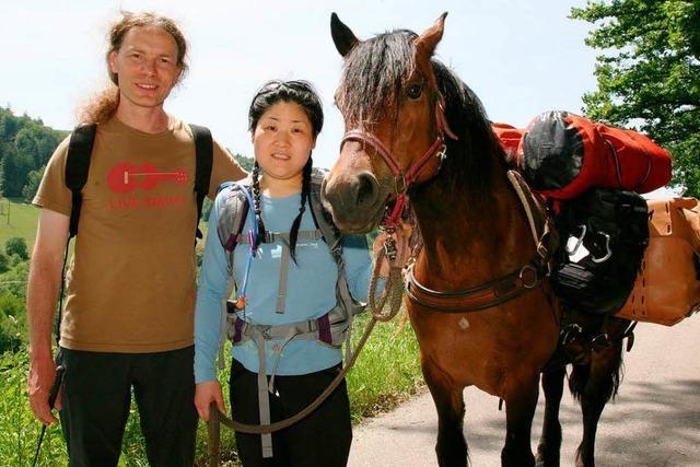 Zu Fuß und mit Packpferd über die Alpen