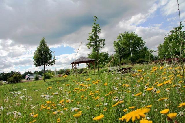 Im Juni gibt es im Elsass viele Veranstaltungen