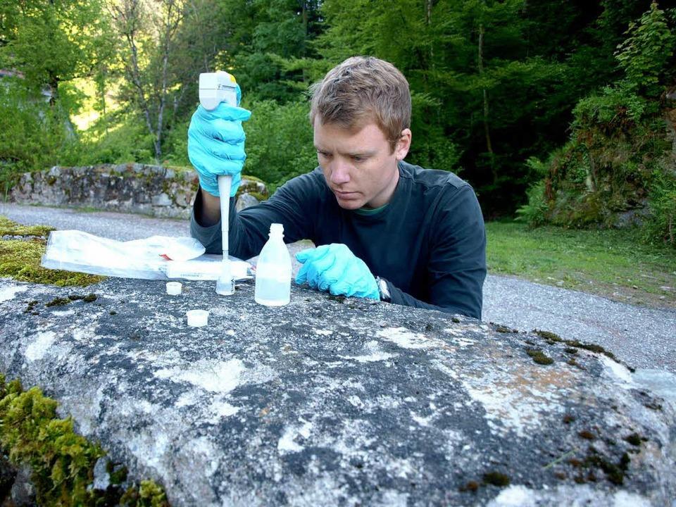 Julian Rolker nimmt Wasserproben in Bürchau  | Foto: Harald Senn