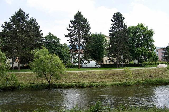 Zollfreie: Bürgermeister Wilke widerspricht Steinbach
