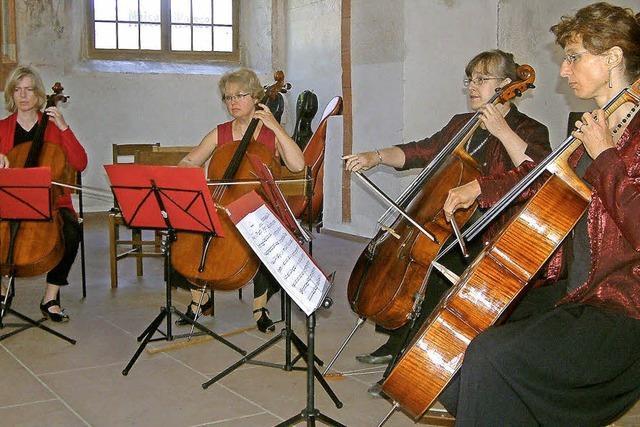 Vier Cellostimmen im Kirchenraum