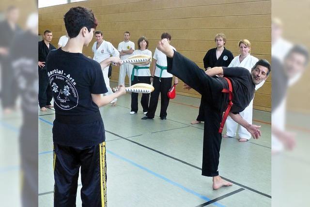 Kampfsportbegeisterte lernen bei Großmeistern