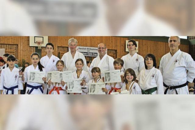 Junge Karatekämpfer in Hochform