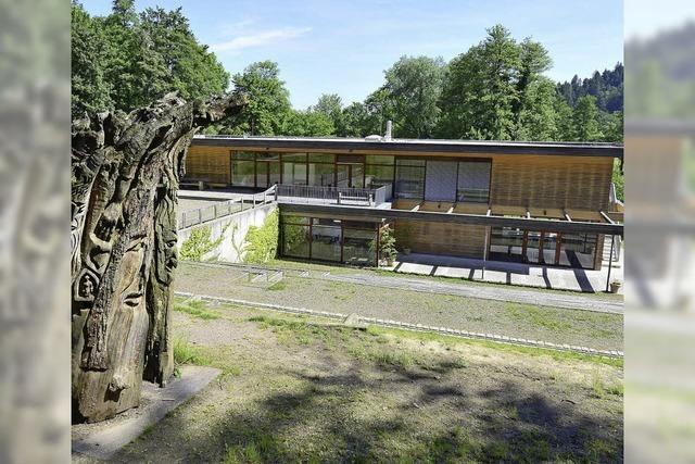 Waldhaus braucht Bebauungsplan