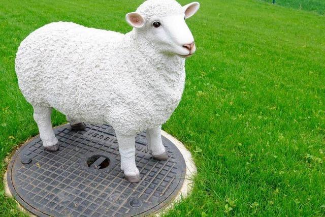 Entlaufenes Schaf erweist sich als Steinskulptur