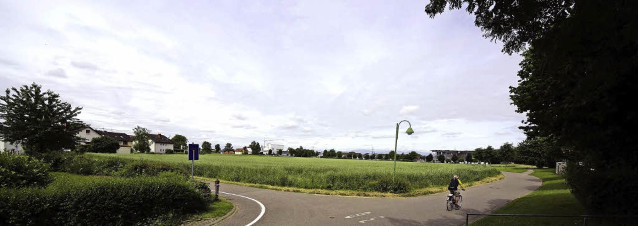 Noch ist es ein weites Feld – ba... Hirschmatten kommt in die Offenlage.     Foto: martin pfefferle