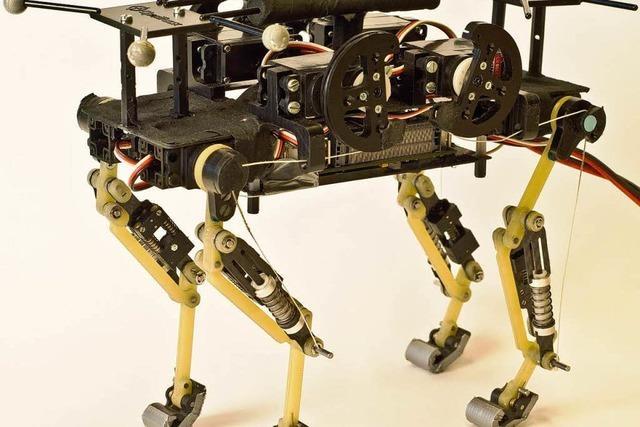 Schweizer Forscher bauen vierbeinigen Rekord-Roboter