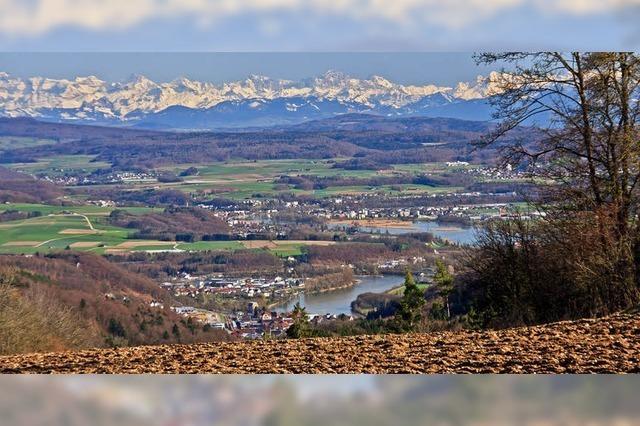 Blick vom Hungerberg auf die Schweizer Alpen