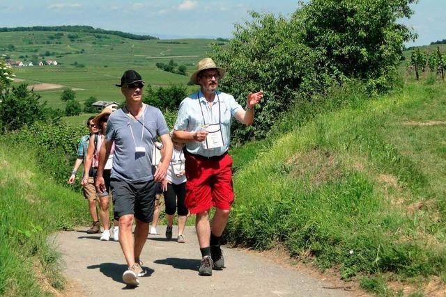 2000 Gäste bei der kulinarischen Weinwanderung