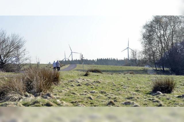 Nabu bekommt 33000 Euro von der Stadt für das Naturerbe auf dem Langenhard