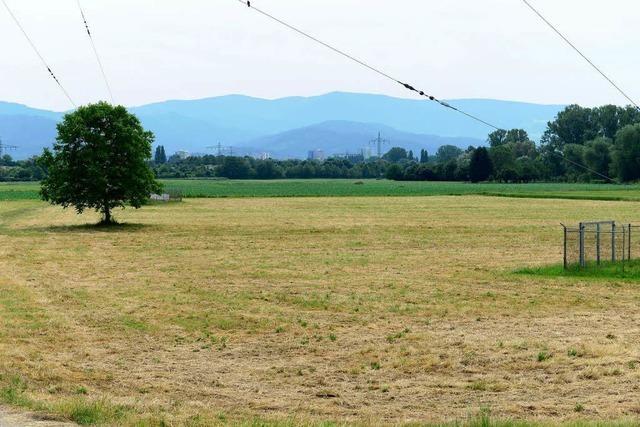 Dietenbacher Grundstücksbesitzer: Stadt will uns über den Tisch ziehen