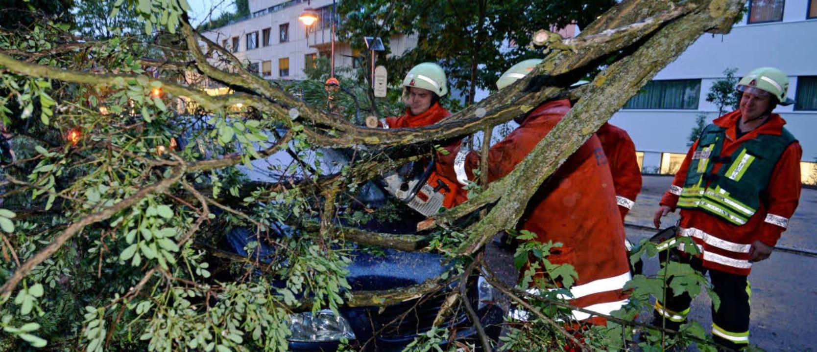 Umgestürzte Bäume bescherten der Feuerwehr im Freiburger Osten viele Einsätze.  | Foto: dpa