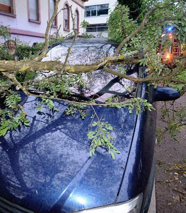 Das Unwetter über Freiburg entwurzelte Bäume und sorgte für Blechschäden.  | Foto: dpa