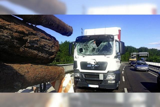 Holzstämme bohren sich ins Führerhaus