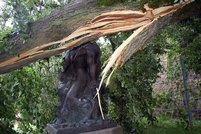 Schäden durch Starkregen und Sturm