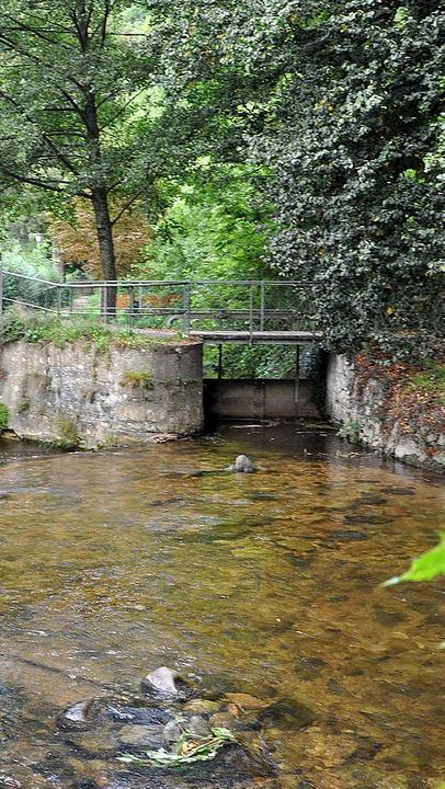 Diskutiert wird über Wasserkraftwerke ...usammenfluss von Neumagen und Talbach.  | Foto: M. Lange/R. Ruther