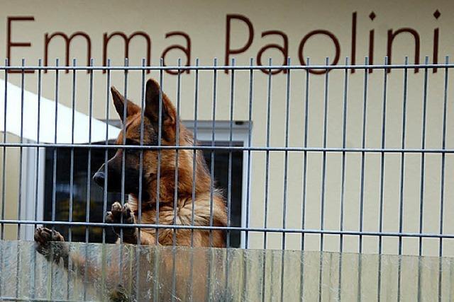 Tierschutzverein erteilt Hausverbote - Konflikt verschärft sich weiter