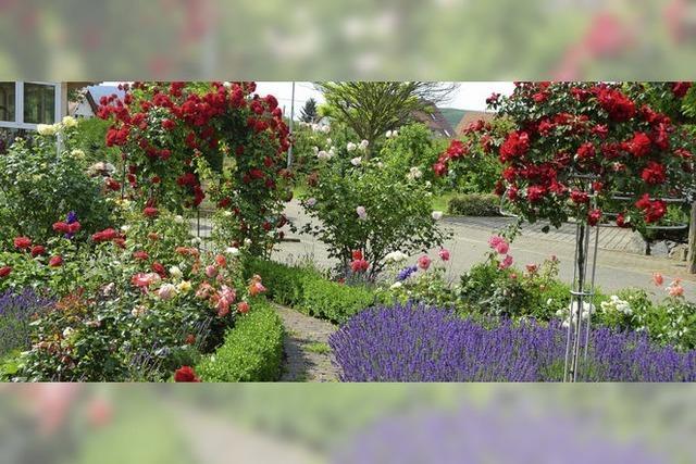 Den Rosengarten