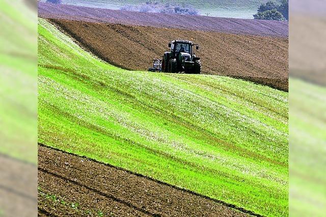 Die Reform der EU-Agrarpolitik ist fast beschlossen