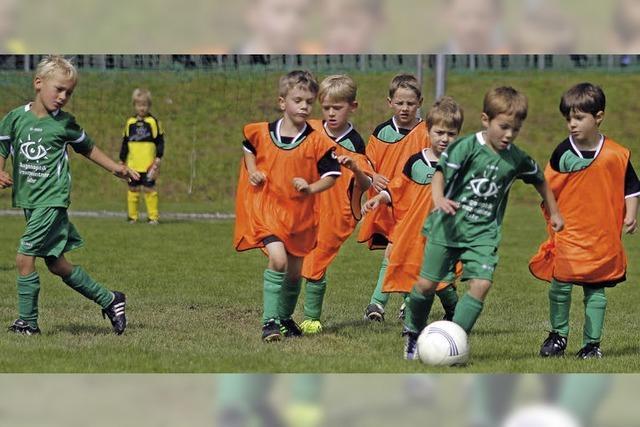 10. Schuttertalcup: Ein Fest für junge Kicker